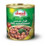 FOUL MOUDAMMAS ALWADI 860G