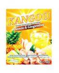 BOISSON FRUITEE INSTANTANEE KANGOO ANANAS GINGEMBRE 6 X 12 X 50 G
