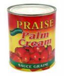 SAUCE GRAINE PALME PREMIUM PRAISE 100% GHANA BOITE 4 - 4 X 24